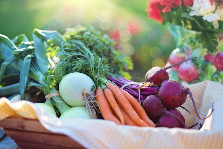 Why are we buying organic food?