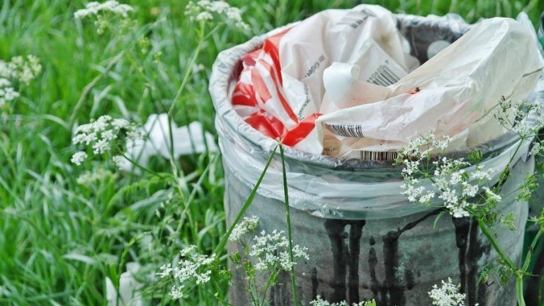 No more free plastic bags at stores in Poland