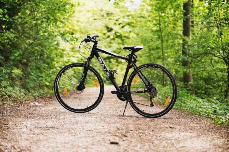 Bikes and bike accessories are biggest segment of Polish sport equipment market