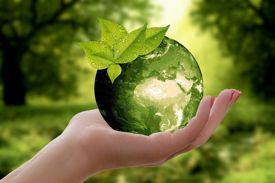 natura ziemia planeta