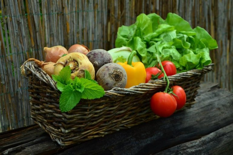 Polish state to consolidate the agri-food sector
