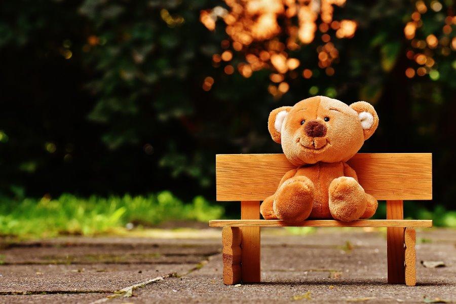 teddybear bench park